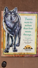 Wolves at the Zoo
