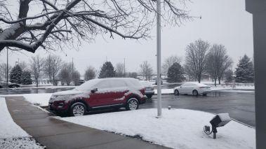 Snowball fight anyone?